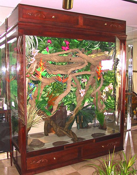 Variety of elaborate reptile cage models - Jworlds - www