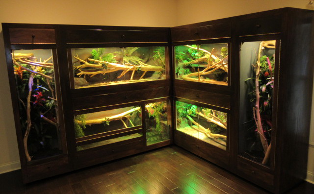 Reptile Custom Cage Showcases Jworlds Www Jworlds Net