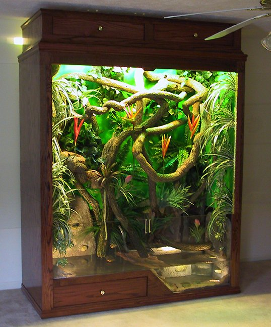 Custom Reptile Cages | Jworlds - www jworlds net